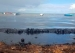 France Deploys Equipment to Mauritius to Help Contain Oil Spill(翻译VIP)