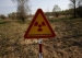 Scientists Study Chernobyl Fungus as Protection against Space Radiation